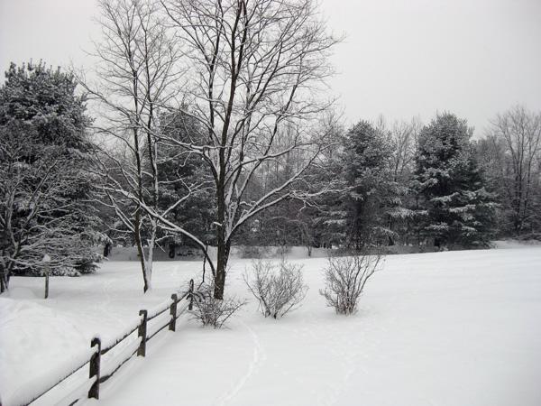 snow evening