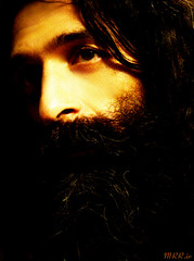 Farshad Ramezani /   (Mohammad Reza Rostami) Tags: bass bassist base farshad ramezani
