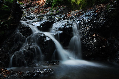 Uvas Canyon Park (+ small Waterfalls )