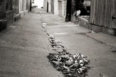(m. wriston) Tags: street city urban blackandwhite bw usa white black lens 50mm prime garbage alley nikon focus low maryland coke baltimore pop 2nd pile patterson gutter cans manual nikkor eastside 50mmf18d d40