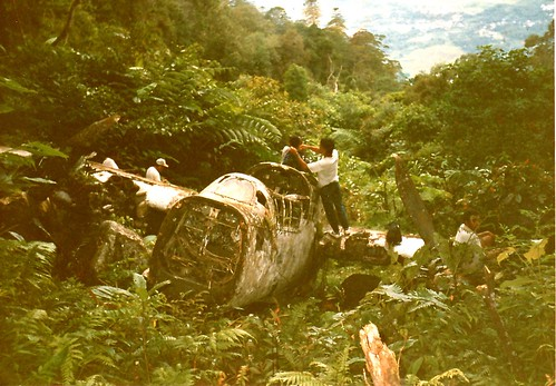 Warbird picture - P-61 A Black Widow, Western Papua - Warbird crash