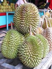 durian magsaysay park davao