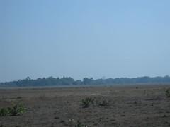 (ishmael1973) Tags: chhattisgarh