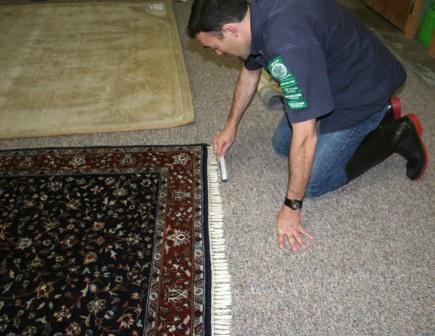 Persian Rug Fringe Detailing