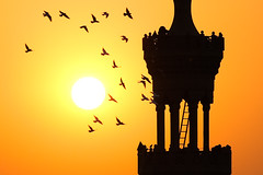 (ania.egypt) Tags: travel sunset orange sun birds silhouette yellow minaret islam egypt mosque cairo soce egipt ptaki ty zachdsoca podr kair pomaracz meczet