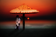 dream of the shaman (AlicePopkorn) Tags: sunset nature mushroom night photoshop creativity energy digitalart flight dream creativecommons sacred mystical meditation awareness spiritual magical consciousness shaman alicepopkorn theawardtree
