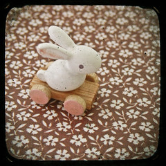(_cassia_) Tags: pink flowers brown white blur rabbit bunny shop vintage toy pattern wheels etsy dust imperfection ttv throughtheviewfinder cassiabeckcom