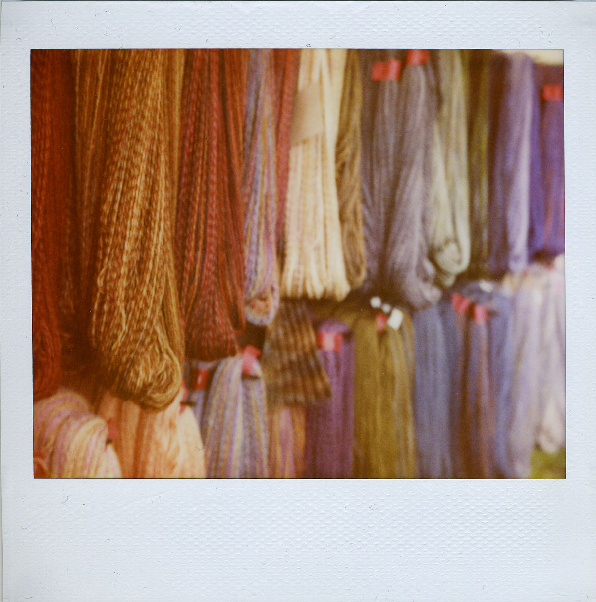 'roid week 2009: sheep & wool fest (mon)