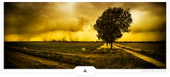 Chasing Storm II (Gert van Duinen) Tags: storm tree field germany landscape countryside path digitalart pastures landschaft 2009 landschap emsland dutchartist landschaftsaufnahme cresk gertvanduinen