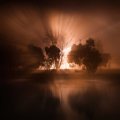 shadow of the day (sadaiche (Peter Franc)) Tags: light reflection tree water silhouette fog night foggy peaceful melbourne mysterious tranquil beams albertparklake imhungrytimetocookmydinner