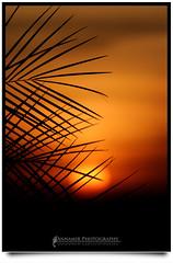 Dunia Di Penghujung Usianya... (UNEDITED) (AnNamir c[_]) Tags: sunset sun silhouette canon 350d leaf sigma 300mm malaysia silueta siluet dq senja thesun mega merah matahari maghrib kkb annamir puteracom dqkkb canonsun fotografikrcom