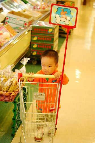 寶寶專用購物推車^^(2)