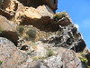 Ruines médiévales du Castellu d'Urnucciu