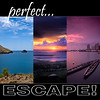 PERFECT ESCAPE LOGO W