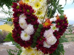 Cruces de mayo 2010. 100. P1510524