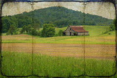 ~country~ (tammy_grooms) Tags: trees ohio green texture field barn country hill amishcountry cynthiana saturdaydrive canonrebelxs ruralohio pikeco ohiofoothills tammygrooms lenabemanna muddyforkroad