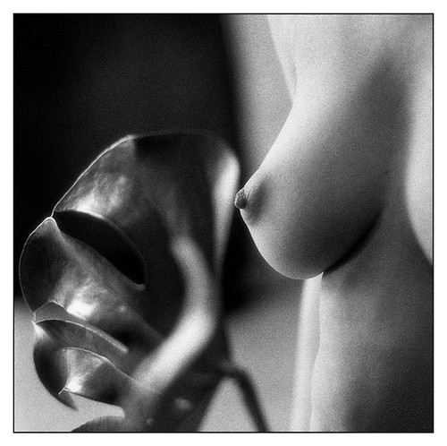 body part photo - untitled by Monika Brand