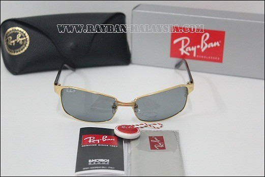 RB3319 Polarized FRAME