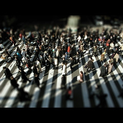 urban (shotam) Tags: city people urban snap  zebra osaka 365 tilt grdigital ricoh 2009 umeda  tiltshift grd 9365 grd2 tiltshiftmaker