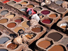Tannery of Fes, Morocco (by_irma) Tags: man men travelling leer manatwork morocco 1001nights marokko fes tannery leerlooierij aplusphoto