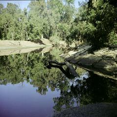 (igalsc) Tags: park 6x6 tlr film nature analog reflections israel sand fuji 2009 pro160s ljubitel igalsc nahalsorek seventeen7photo