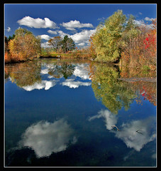 ~ BLUEish Monday~ (ViaMoi) Tags: blue autumn friends sky orange white canada reflection green fall home nature water clouds photography mirror pond natural ottawa canadian reflect breathtaking naturalist blueribbonwinner supershot bej mywinners abigfave pl