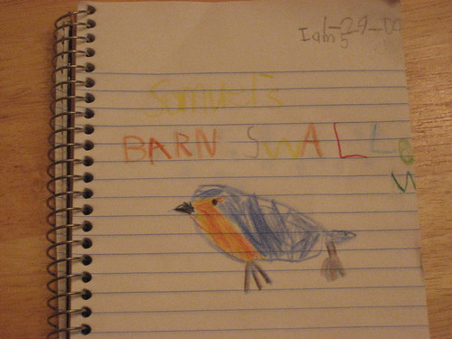 Barn Swallow Nature Journal Page