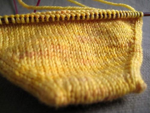Gox Socks in a Box toe