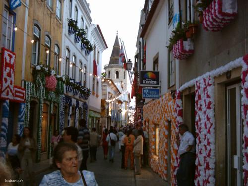 Toutes les boutiques contribuent à l'aspect fleuri de la ville