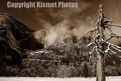 Barren Sepia (Kismet Photos) Tags: trees winter mist mountain snow tree ice rock clouds yosemite elcapitan