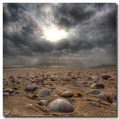 Seashells meeting (Vicent de los Angeles) Tags: sea sun shells seascape sol beach valencia clouds canon landscape eos mar spain sand agua bravo searchthebest shell wideangle playa paisaje arena nubes nublado concha hdr gandia nwn ganda canonefs1022mm photomatix xeraco tonemapping 40d mywinners abigfave goldstaraward magicunicornverybest