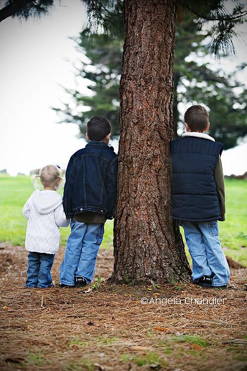 three against tree w