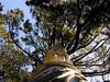 (marcela paz*) Tags: lota parquecousiño parquedelota