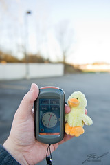 Quacky's First Cache