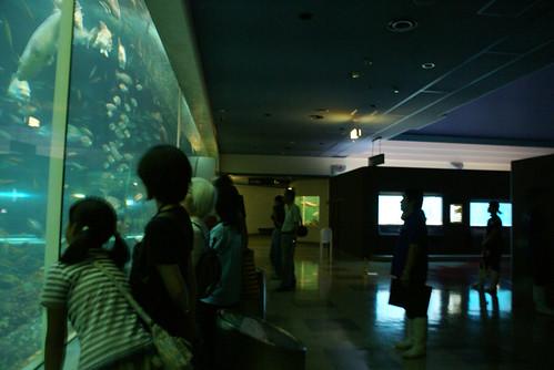 マリンピア日本海のナイトツアー