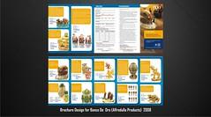 Alfredulla - BDO brochure 01-22-08 (noelevz) Tags: