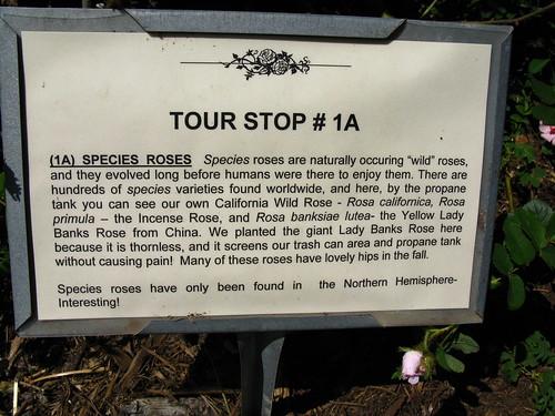 Tour Stop 1a