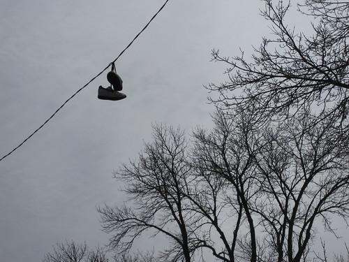 Shoefiti in Longfellow, Minneapolis