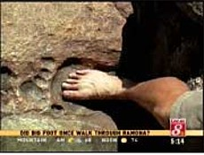 Fossilized Nephilim footprint (NephilimSkulls) Tags: giant real fossil cleveland proof giants footprint fossilized
