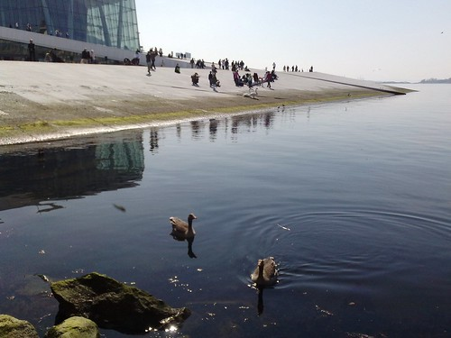 Oslo Opera House to the People #3