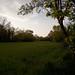 Campo al tramonto...