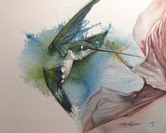 paint a green hummer (Jennifer Kraska) Tags: watercolor hummingbird jennifer hummer kraska
