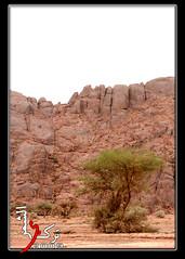 يـ الطلح (Al-Shammari, Turki) Tags: 2009 سماء ربيع جبل جو صحه صحي حايل حائل طلح اجبال صحيين بطحاء بطحا