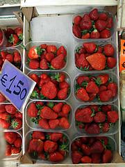 Trento, il mio mercato quotidiano.