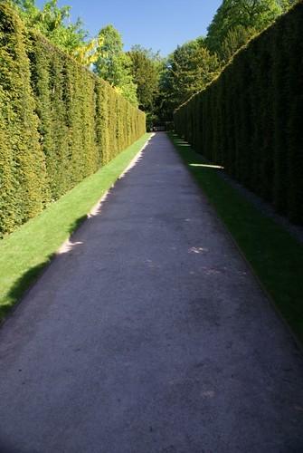 powis_gardens-avenue
