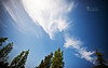 A Blue Canvas... (SonOfJordan) Tags: blue trees sky white colour green clouds canon painting skyscape eos amman wideangle canvas jordan streaks xsi sigma1020mm 450d الاردن samawi sonofjordan shadisamawi المملكةالاردنيةالهاشمية wwwshadisamawicom
