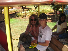 On the Pineapple Express, Dole Plantation