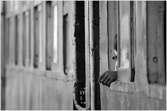 06:14 am - first 'n lone (nevil zaveri (thank you for 10million+ views :)) Tags: people blackandwhite bw india abstract man window monochrome station train photography photo blog coach waiting pattern hand photos geometry surrealism transport stock platform documentary surreal railway images minimal photographs journey dang passenger geometrical minimalism zaveri gauge narrow surrealistic railwayline minimalistic gujarat stockimages gujrat nevil waghai billimora nevilzaveri