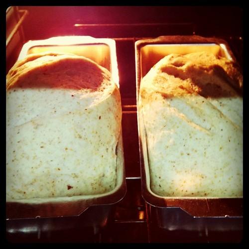 Hoje vai ter pãozinho caseiro por aqui (e cheira bem!)