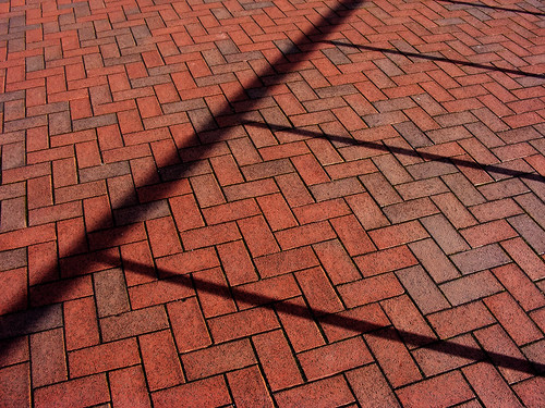 Brick Paving In Sunlight